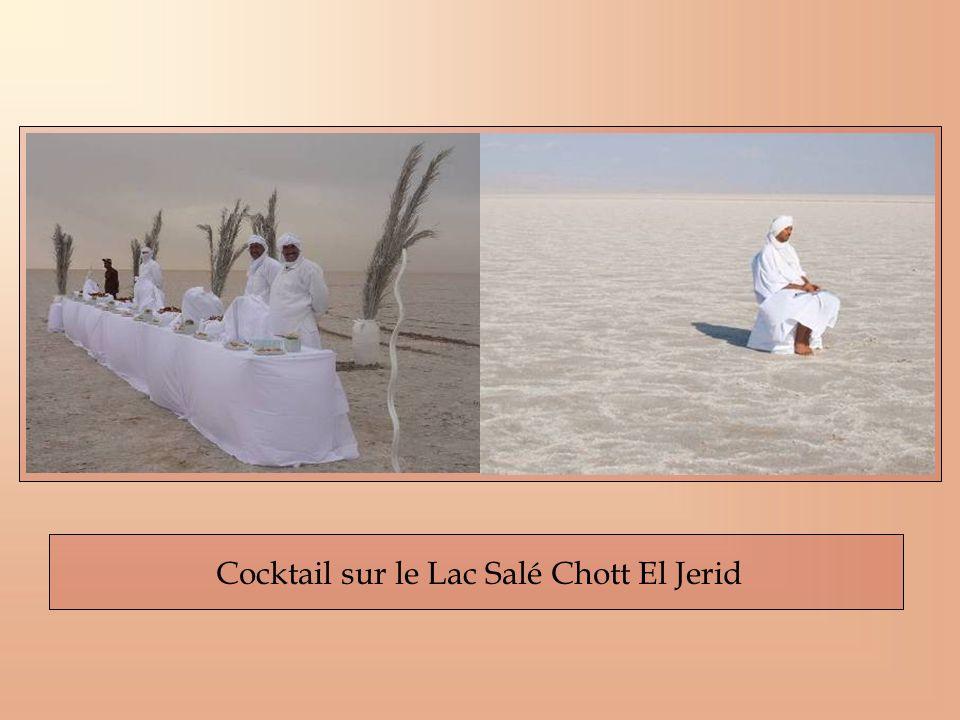 Cocktail sur le Lac Salé Chott El Jerid