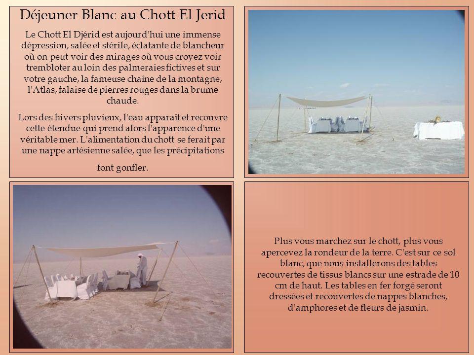 Déjeuner Blanc au Chott El Jerid