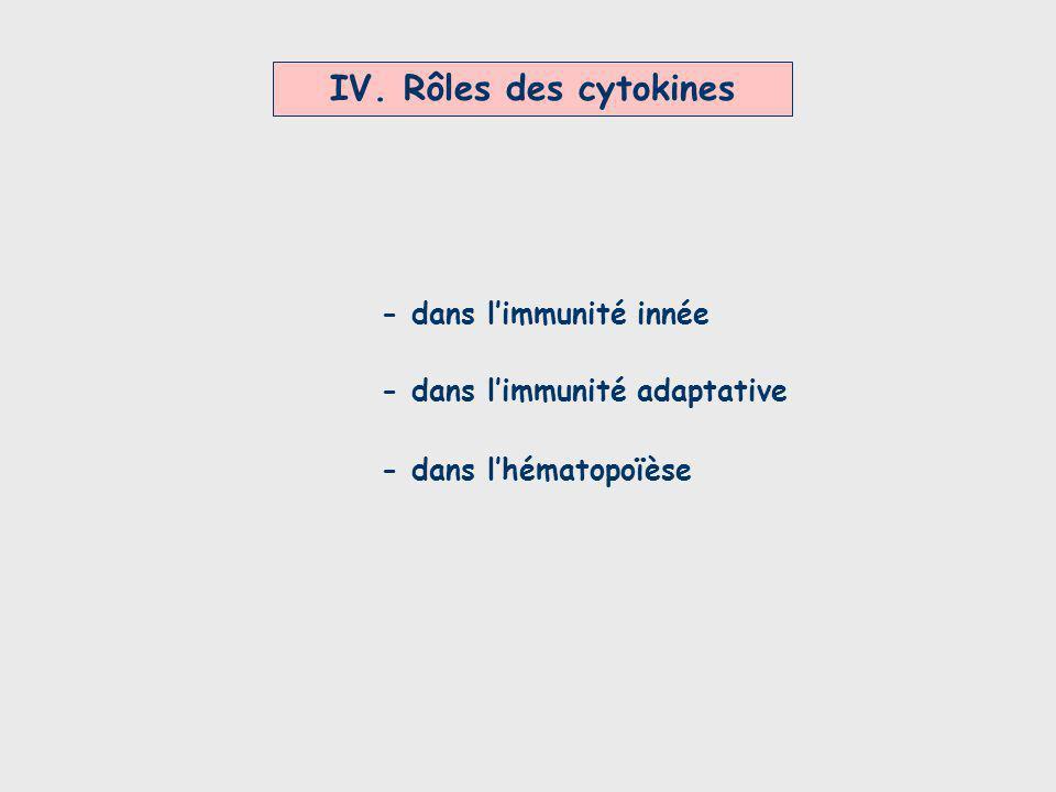 IV. Rôles des cytokines - dans l'immunité innée