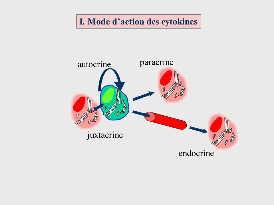 I. Mode d'action des cytokines