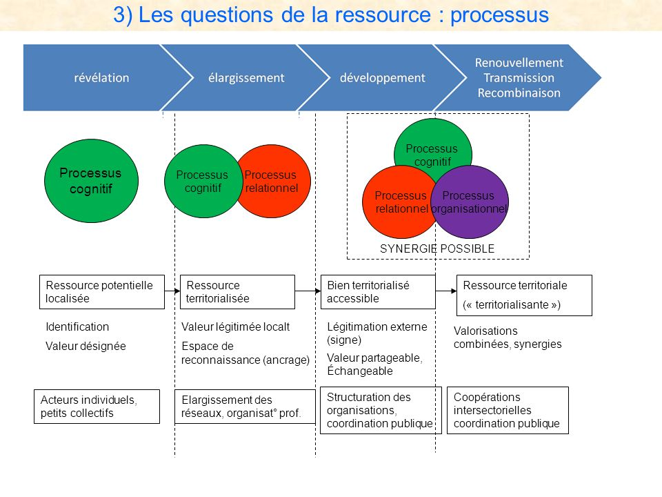 3) Les questions de la ressource : processus