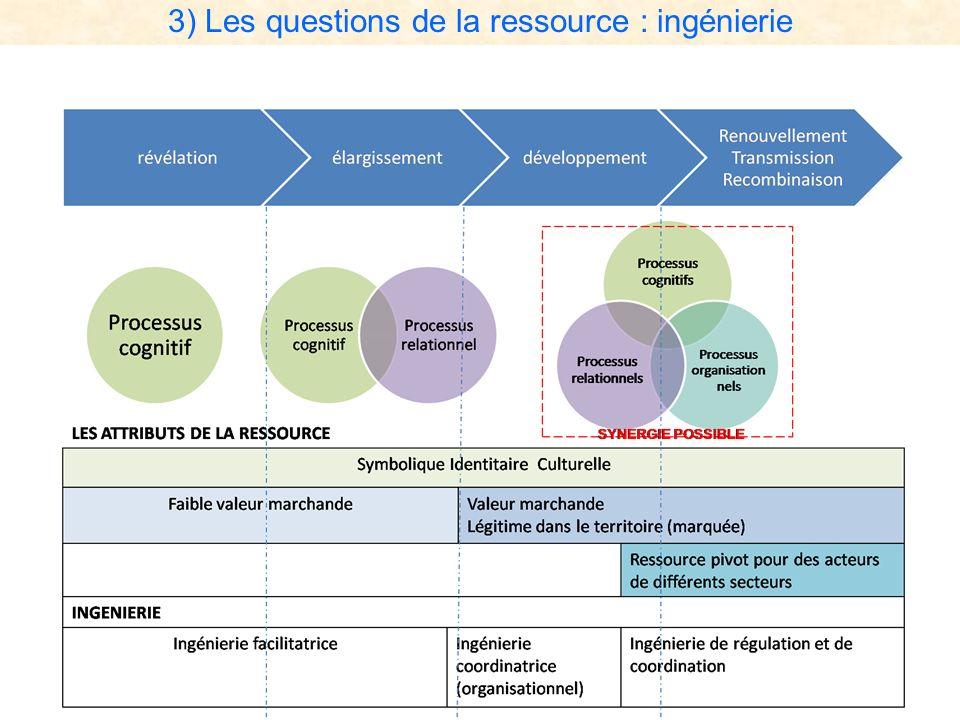 3) Les questions de la ressource : ingénierie
