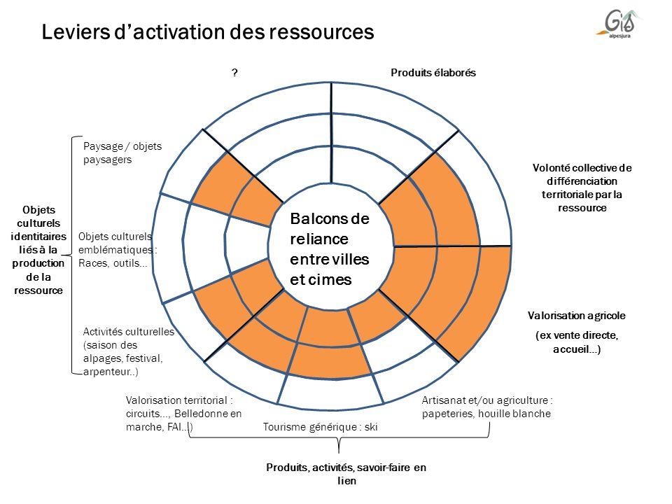 Leviers d'activation des ressources