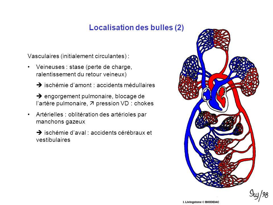 Localisation des bulles (2)