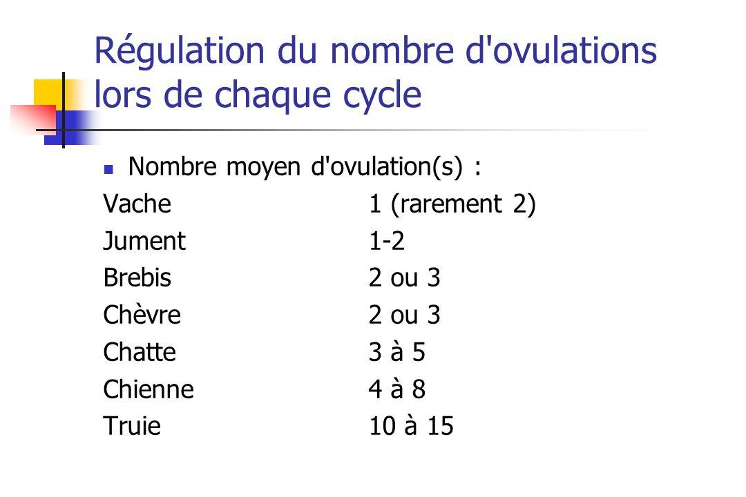 Régulation du nombre d ovulations lors de chaque cycle