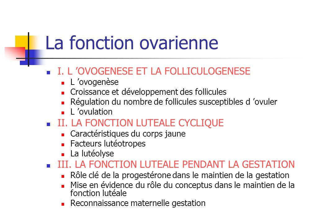 La fonction ovarienne I. L 'OVOGENESE ET LA FOLLICULOGENESE