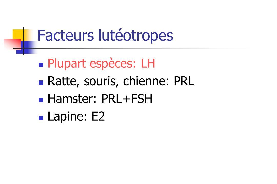 Facteurs lutéotropes Plupart espèces: LH Ratte, souris, chienne: PRL