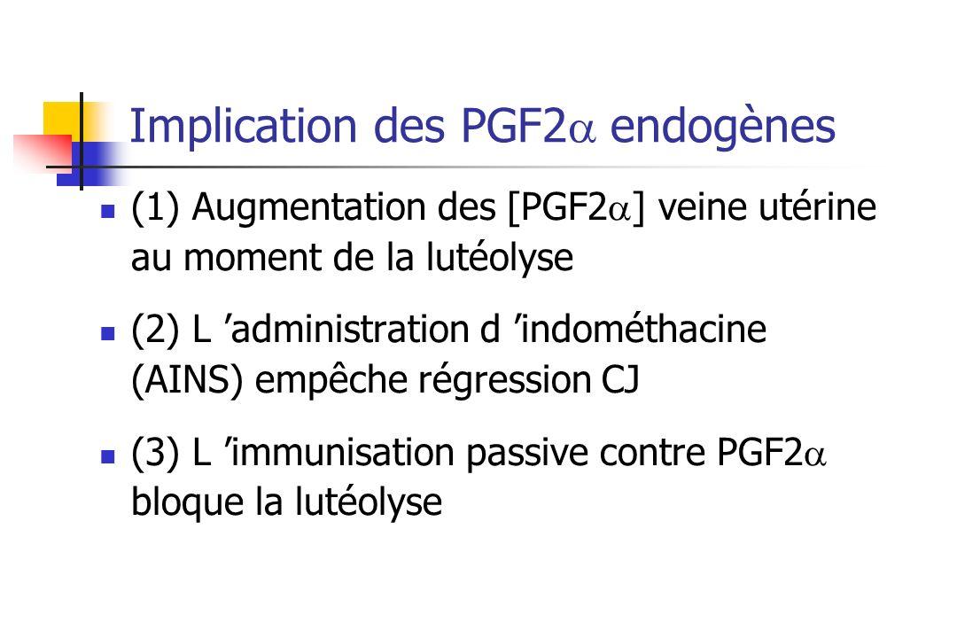 Implication des PGF2a endogènes
