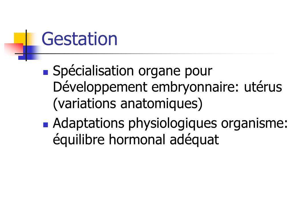 Gestation Spécialisation organe pour Développement embryonnaire: utérus (variations anatomiques)