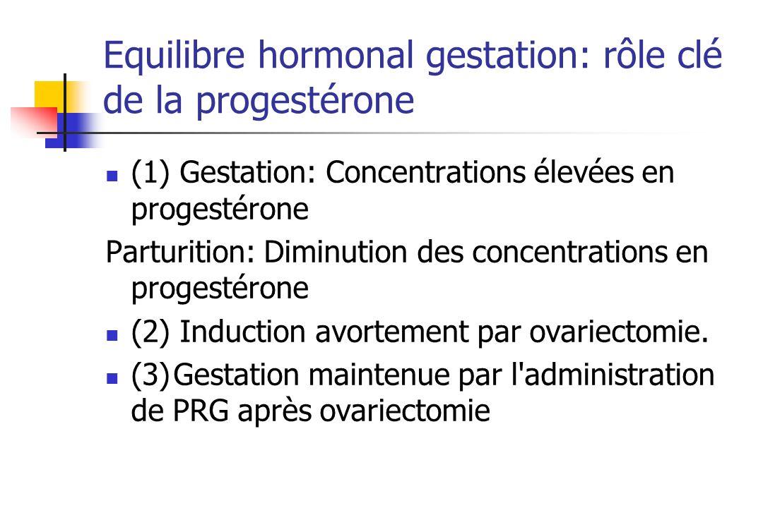 Equilibre hormonal gestation: rôle clé de la progestérone
