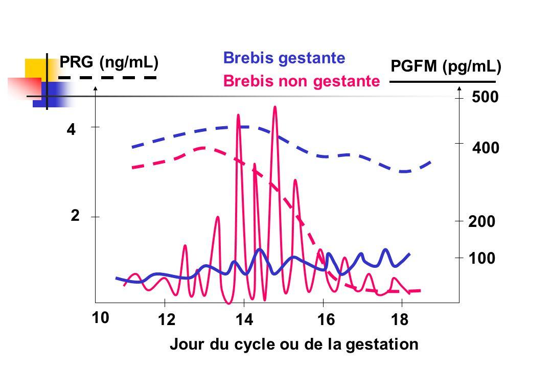 Brebis gestantePRG (ng/mL) PGFM (pg/mL) Brebis non gestante. 500. 4. 400. 2. 200. 100. 10. 12. 14. 16.