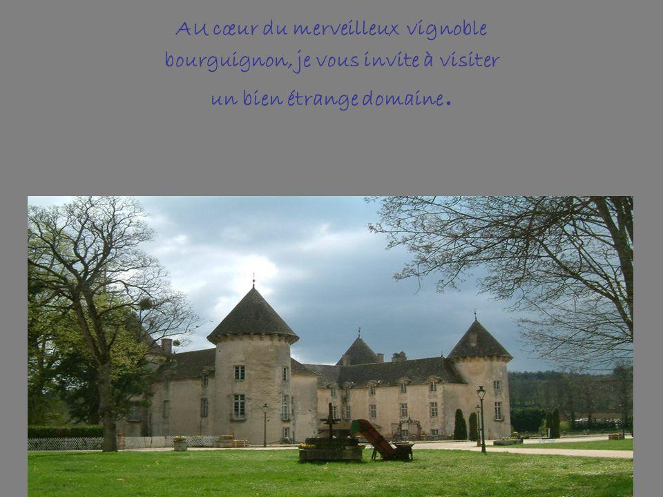 AU cœur du merveilleux vignoble bourguignon, je vous invite à visiter un bien étrange domaine.