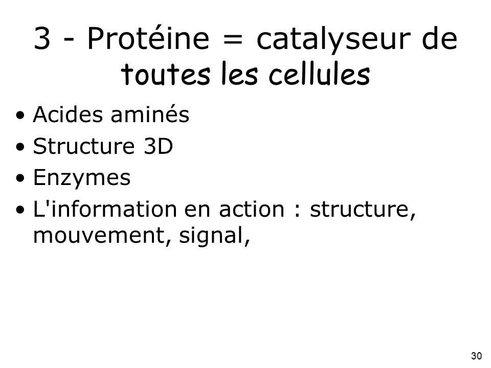 3 - Protéine = catalyseur de toutes les cellules