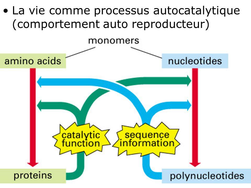 La vie comme processus autocatalytique (comportement auto reproducteur)