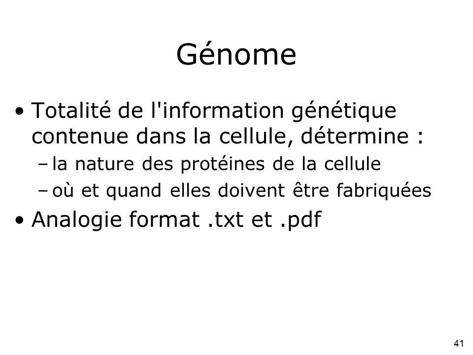 Génome Totalité de l information génétique contenue dans la cellule, détermine : la nature des protéines de la cellule.