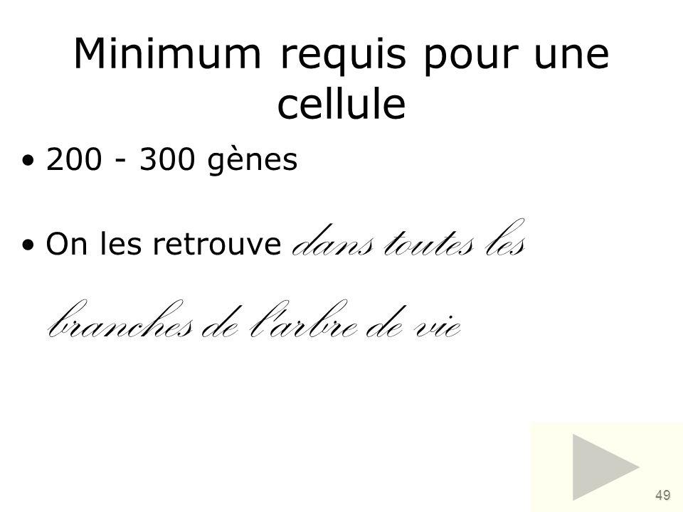 Minimum requis pour une cellule