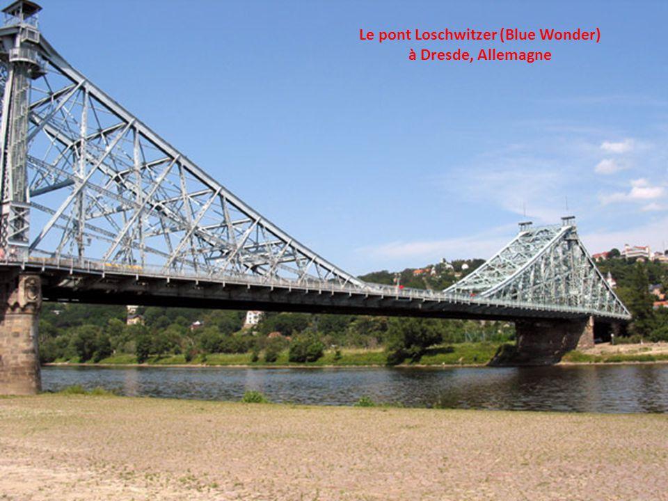 Le pont Loschwitzer (Blue Wonder)