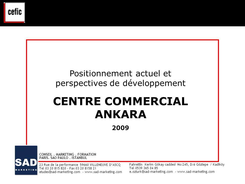 CENTRE COMMERCIAL ANKARA VAL D'EUROPE - ETUDE CLIENTELE - Juin 2008