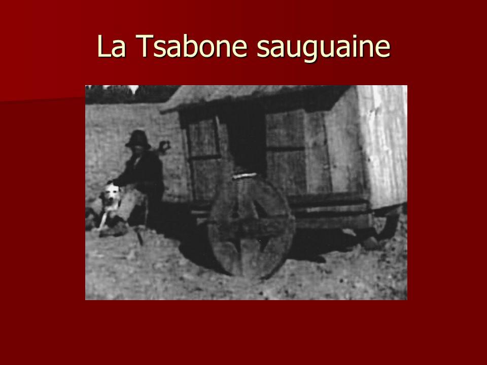 La Tsabone sauguaine