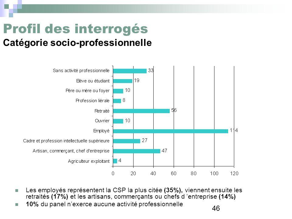 Profil des interrogés Catégorie socio-professionnelle