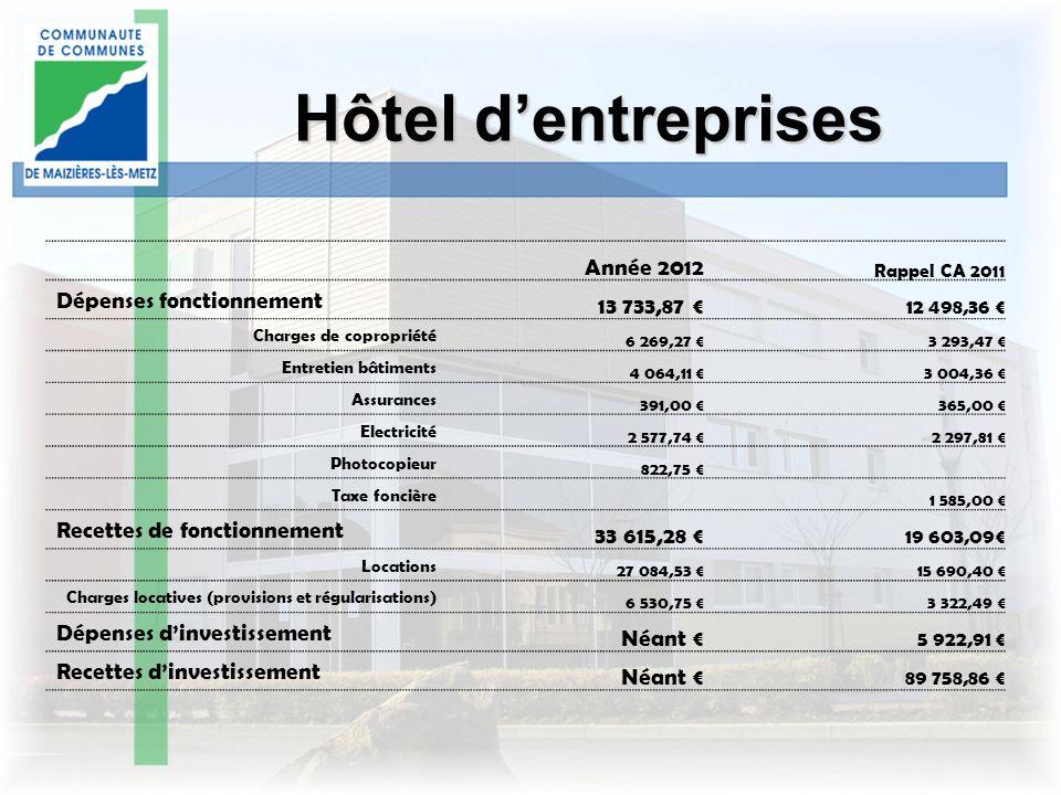 Hôtel d'entreprises Année 2012 13 733,87 € Dépenses fonctionnement