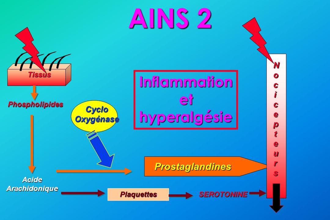 Inflammation et hyperalgésie