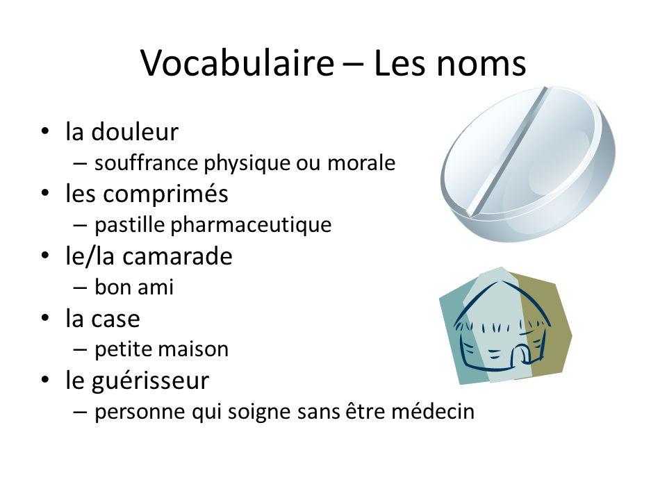 Vocabulaire – Les noms la douleur les comprimés le/la camarade la case