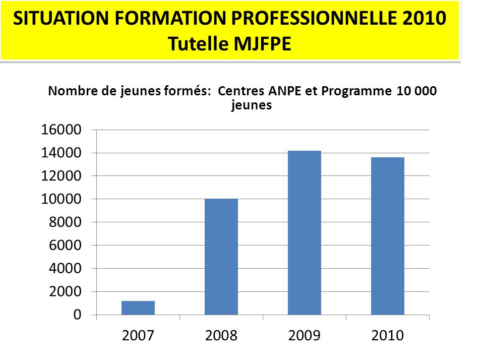 SITUATION FORMATION PROFESSIONNELLE 2010 Tutelle MJFPE