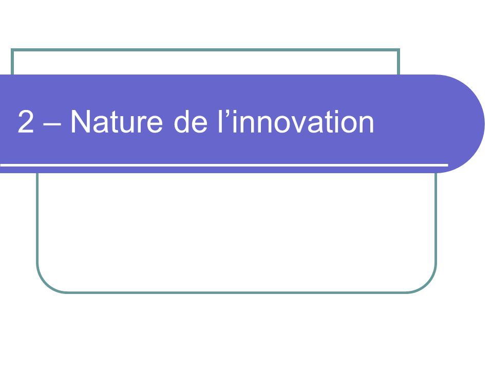 2 – Nature de l'innovation