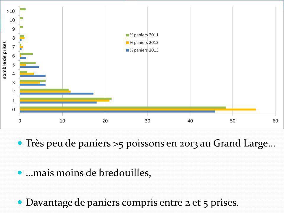 Très peu de paniers >5 poissons en 2013 au Grand Large…