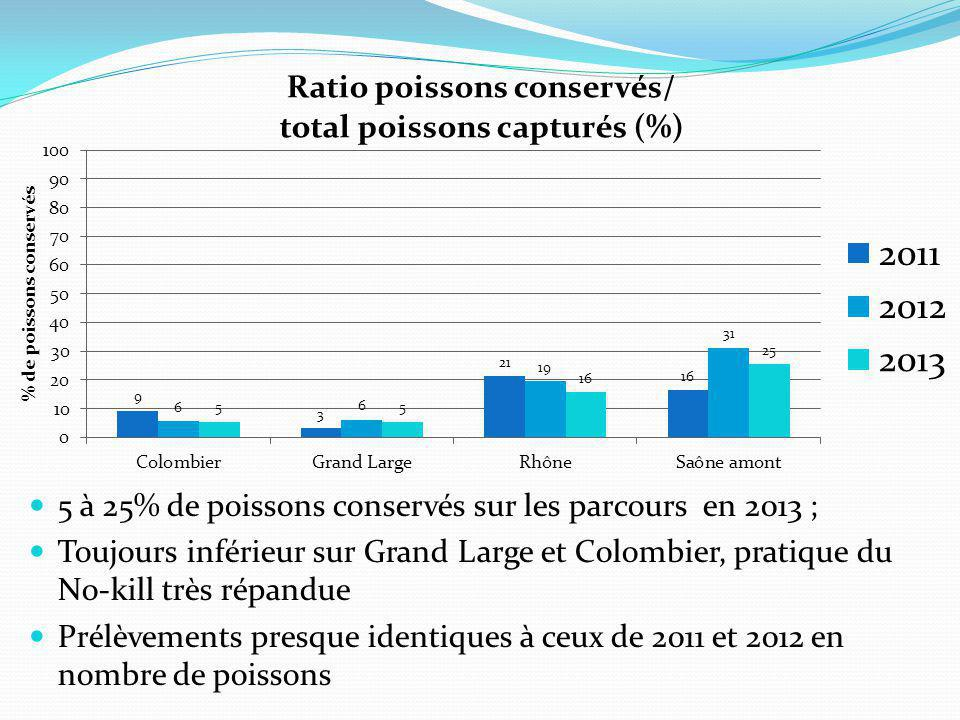 5 à 25% de poissons conservés sur les parcours en 2013 ;
