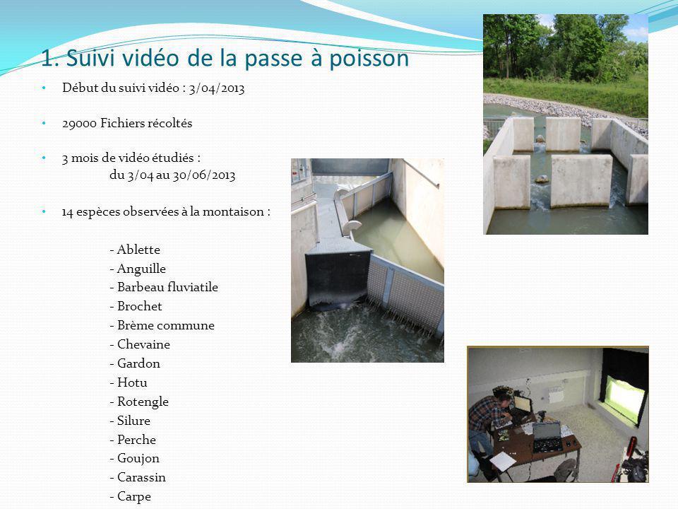 1. Suivi vidéo de la passe à poisson