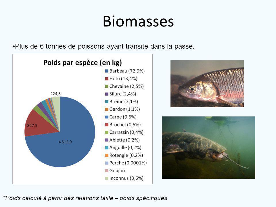 Biomasses Plus de 6 tonnes de poissons ayant transité dans la passe.