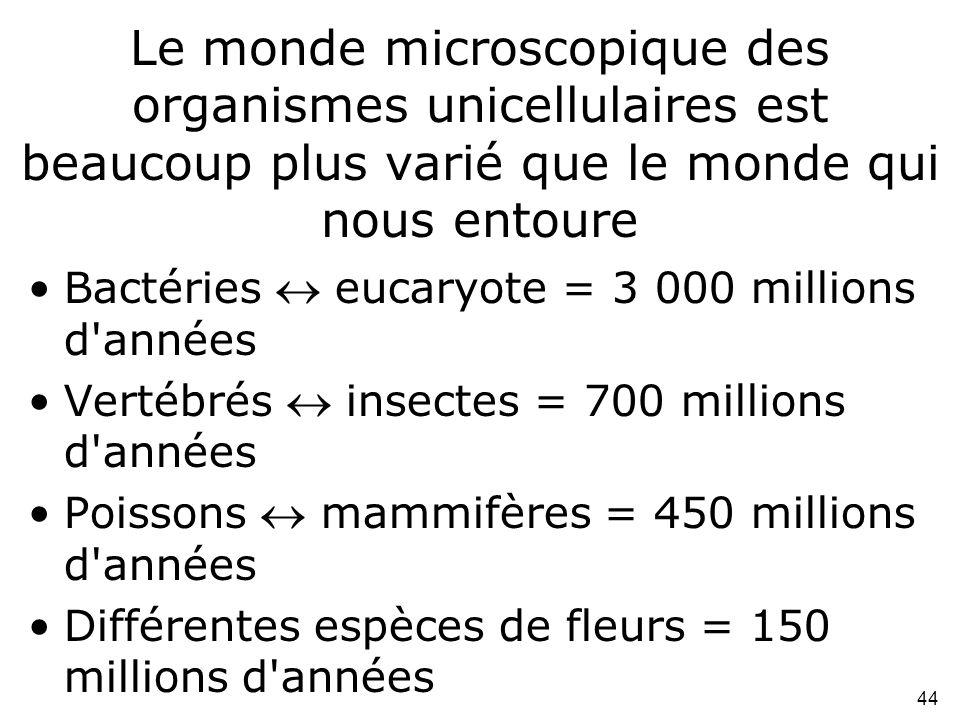 Le monde microscopique des organismes unicellulaires est beaucoup plus varié que le monde qui nous entoure