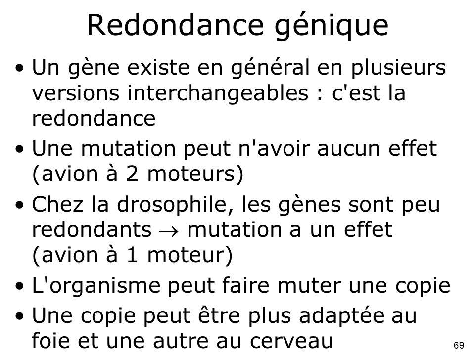 Redondance génique Un gène existe en général en plusieurs versions interchangeables : c est la redondance.