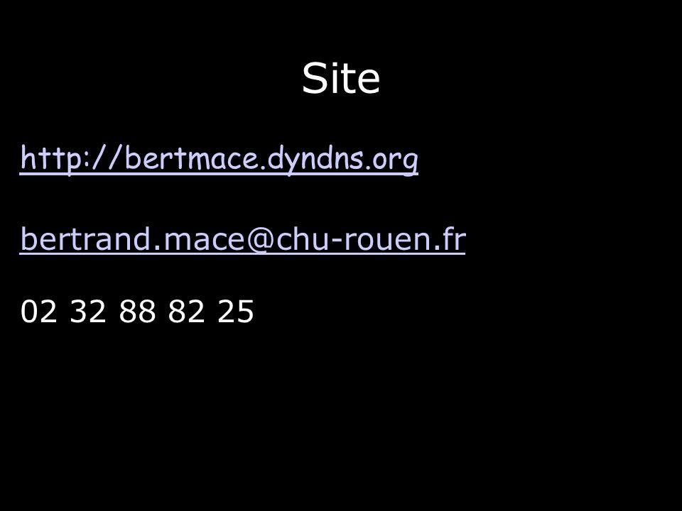 Site http://bertmace.dyndns.org bertrand.mace@chu-rouen.fr