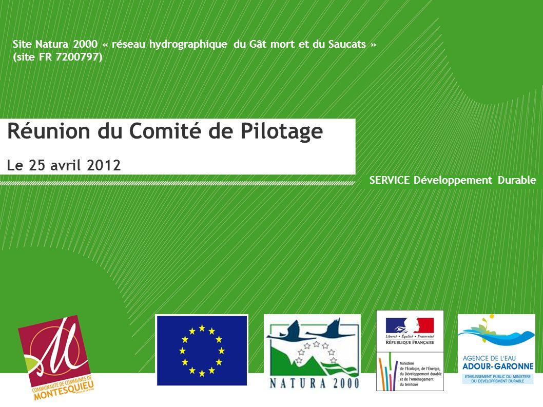 Réunion du Comité de Pilotage