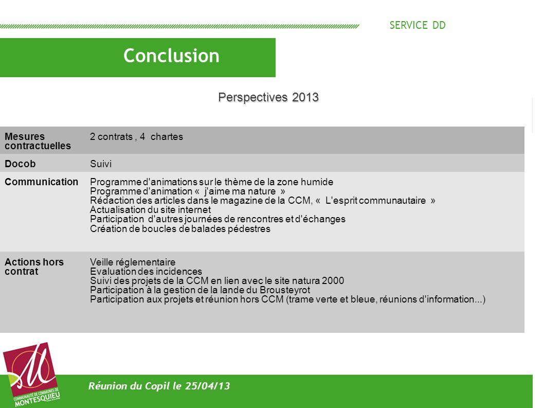 Conclusion Perspectives 2013 SERVICE DD Réunion du Copil le 25/04/13