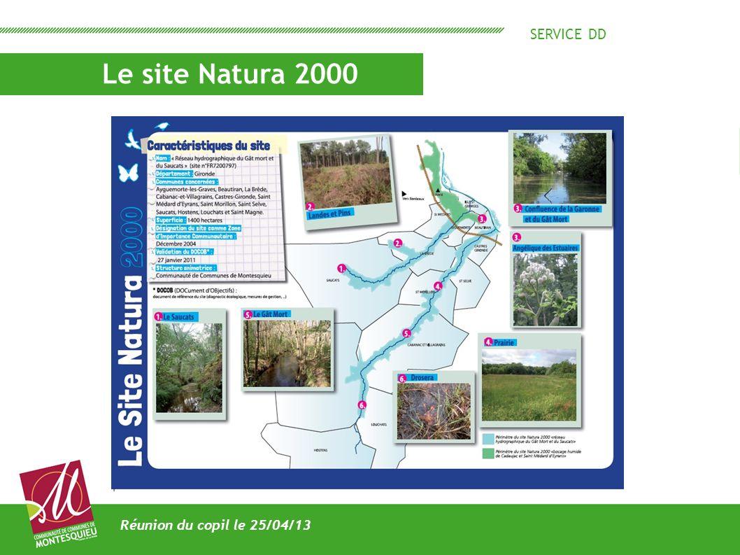 SERVICE DD Le site Natura 2000 Réunion du copil le 25/04/13