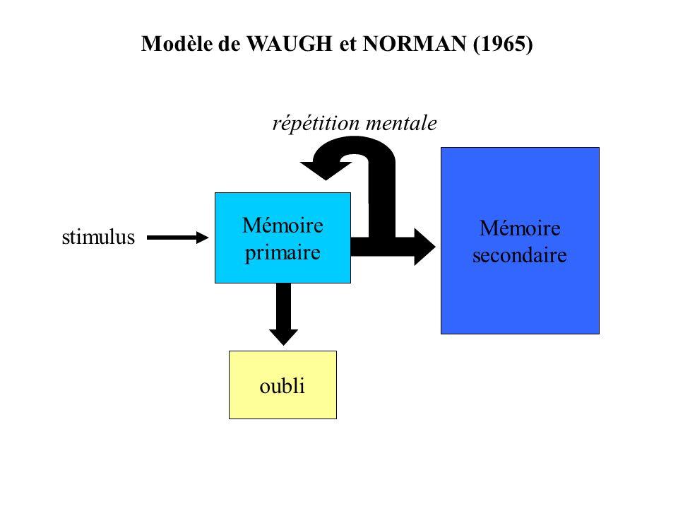 Modèle de WAUGH et NORMAN (1965)