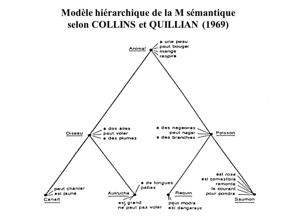 Modèle hiérarchique de la M sémantique