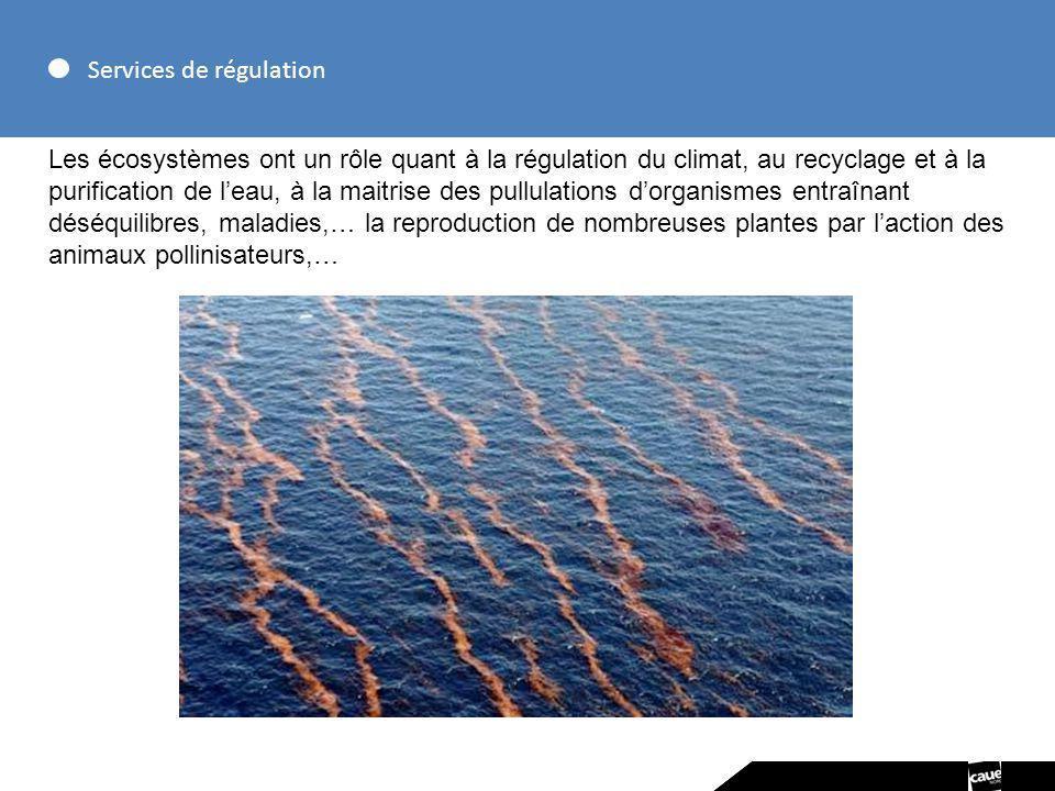 Services de régulation