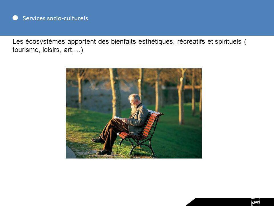 Services socio-culturels