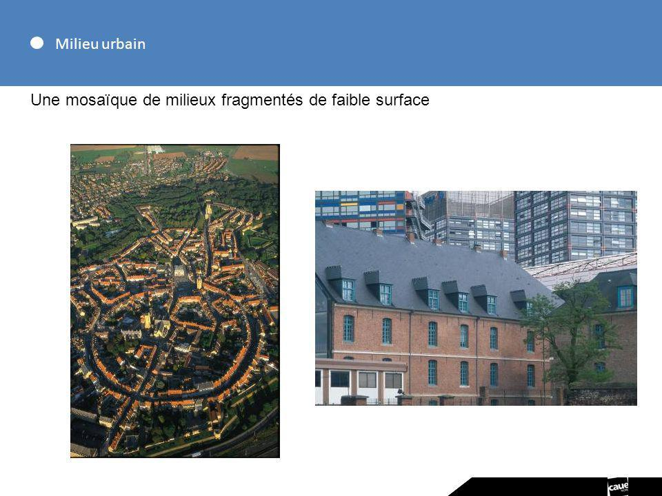 Milieu urbain Une mosaïque de milieux fragmentés de faible surface
