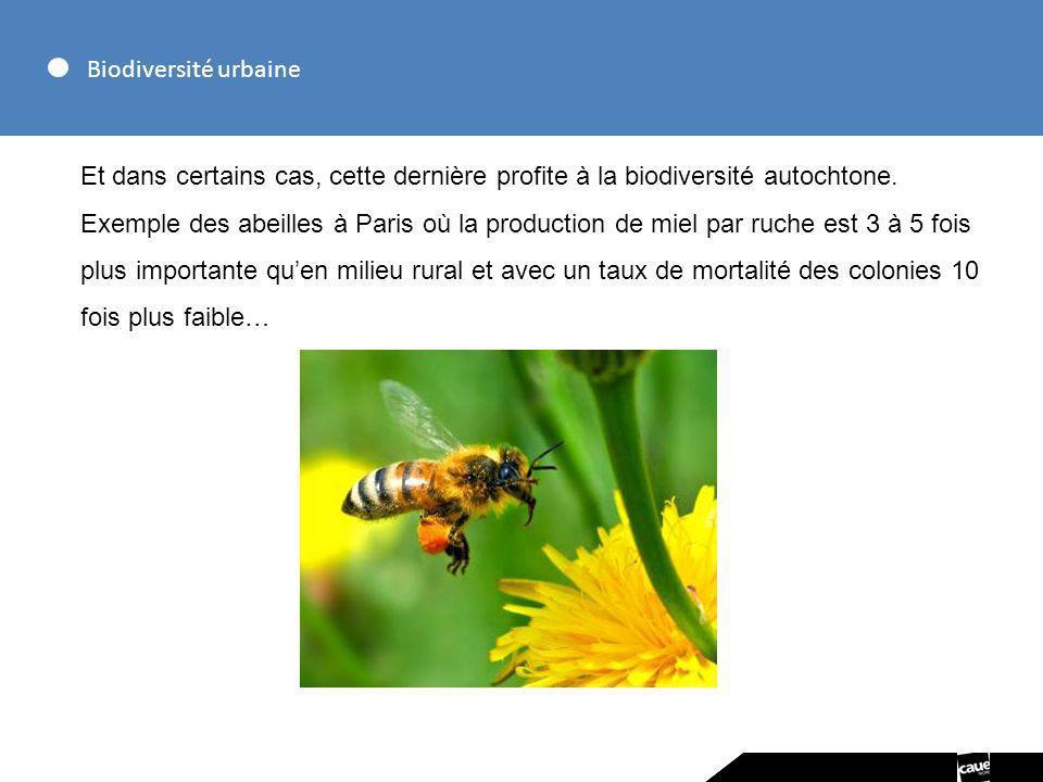 Biodiversité urbaineEt dans certains cas, cette dernière profite à la biodiversité autochtone.