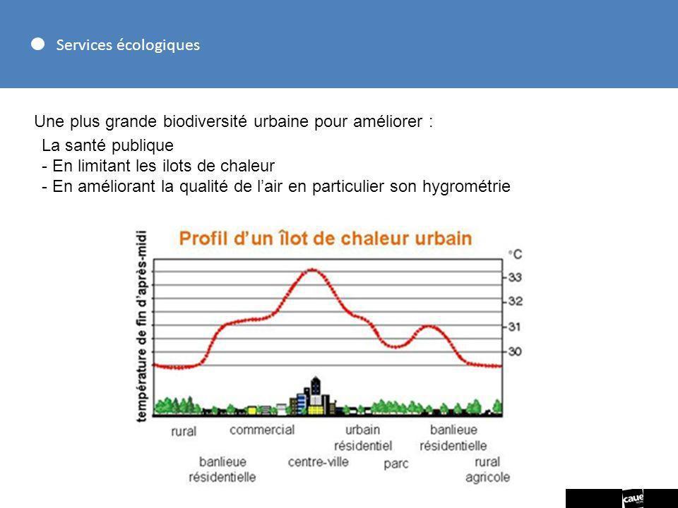 Services écologiques Une plus grande biodiversité urbaine pour améliorer : La santé publique. - En limitant les ilots de chaleur.