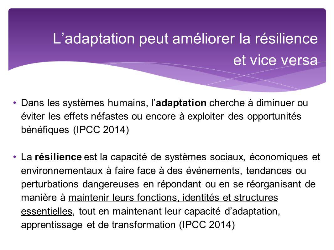 L'adaptation peut améliorer la résilience et vice versa