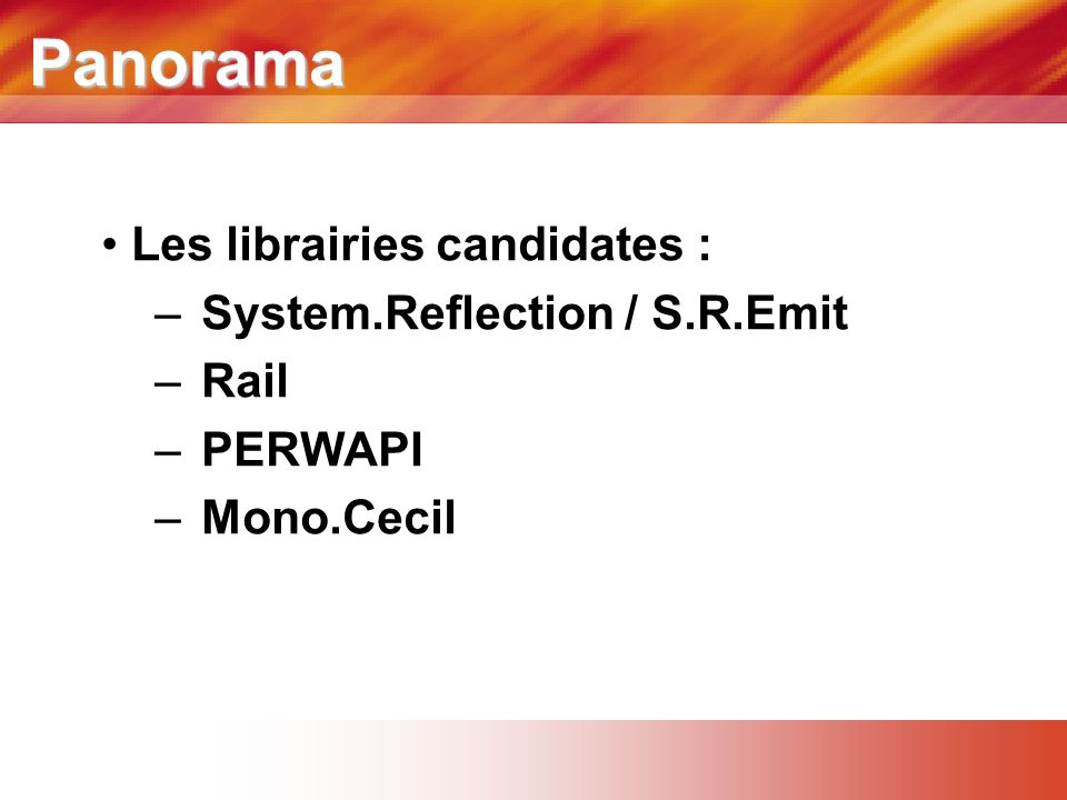 Panorama Les librairies candidates : System.Reflection / S.R.Emit Rail