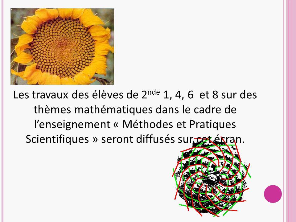 Les travaux des élèves de 2nde 1, 4, 6 et 8 sur des thèmes mathématiques dans le cadre de l'enseignement « Méthodes et Pratiques Scientifiques » seront diffusés sur cet écran.