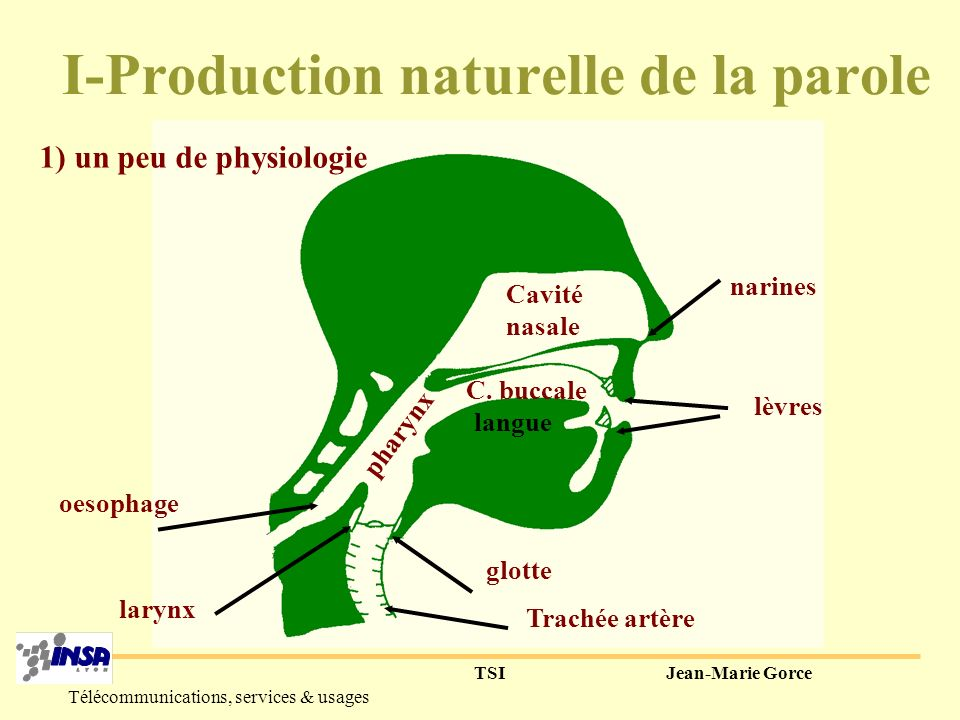 I-Production naturelle de la parole